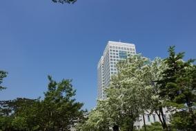 대전시, 2019년 개별주택가격 결정·공시