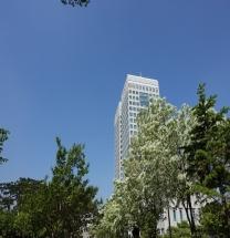대전시, 2019년 공공근로사업 '인기 좋네~'
