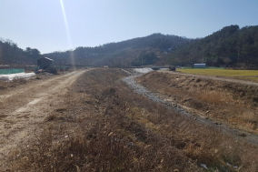 대전 용호천 생태하천 조성사업 추진 박차