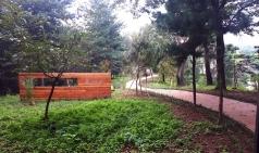 충남대학교, 침례신학대학교에 치유의 숲 조성
