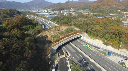 대전시, 내년도 자연환경보전 사업'탄력'_생태통로 예시.jpg